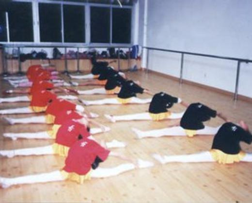 幼师\/舞蹈课程顾问_重庆万亚文化传播有限公司