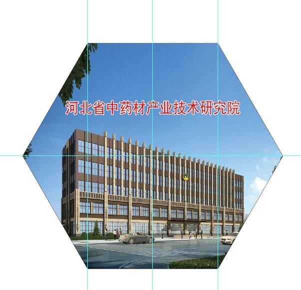 河北金木药业集团有限公司