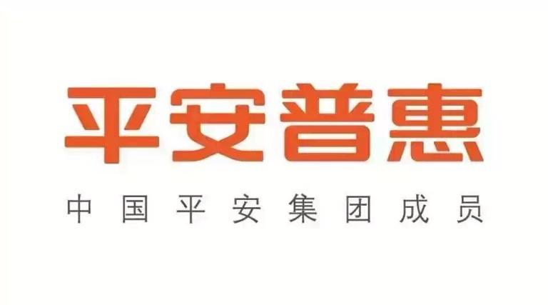 平安普惠临沂上海路分公司