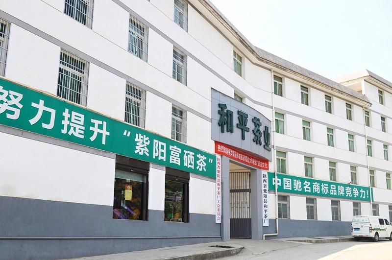 陕西省紫阳县和平茶厂(5101)图片