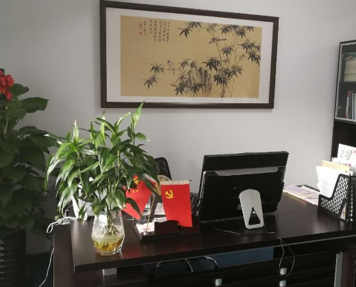 中国建筑装饰装修材料协会
